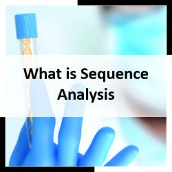 What is Sequence Analysis